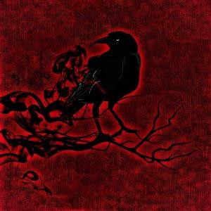 raven-1002796_640